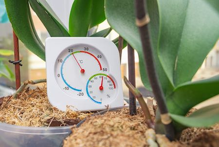 Right Temperatures Matters for Your Grow Room