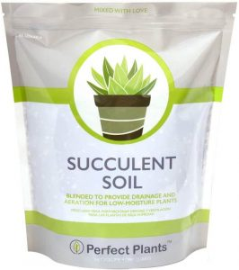 All-Natural Succulent & Cactus Soil Mix from Perfect Plants
